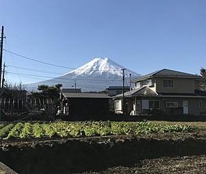 富士山眺望有り